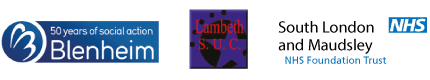Recovering Addict Support in Lambeth Partners